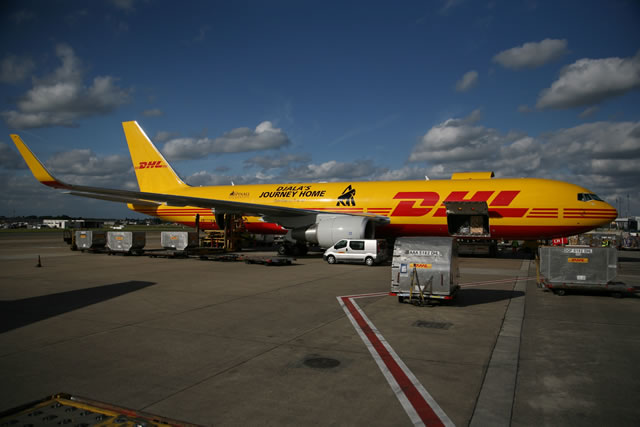 DHL's Boeing 767 on the runway, ready to deliver the gorillas